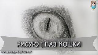 Как нарисовать глаз кошки карандашом