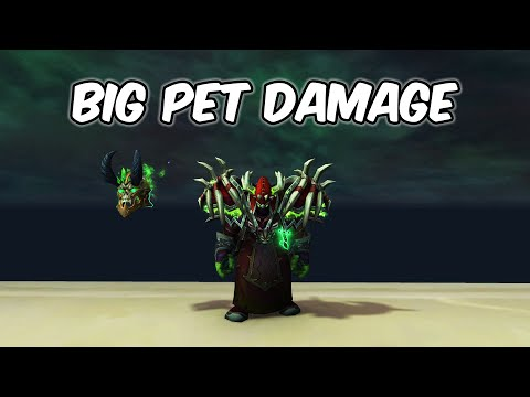 Big Pet Damage - Demonology Warlock PvP - WoW BFA 8.1.5
