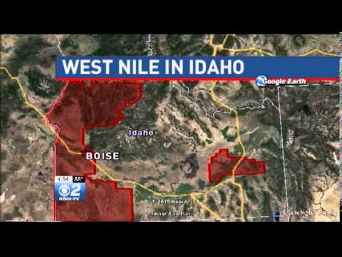 First Human Case of West Nile Virus in Idaho