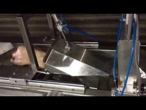 promarks vacuum packaging machine