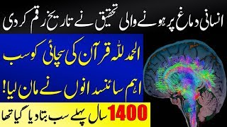 Muslim Scientists Amazed After Research On Human Brain | Islamic Solution