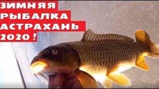 Астрахань Зимняя рыбалка сезон 2020 2021 Бузан Поймал подлещика рака и старшой поймал сазана