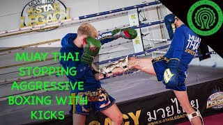 Muay Thai Vs Boxing - Countering Punches with Kicks Tutorial