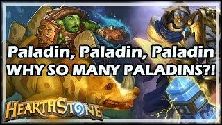 [Hearthstone] Paladin, Paladin, Paladin, WHY SO MANY PALADINS?!