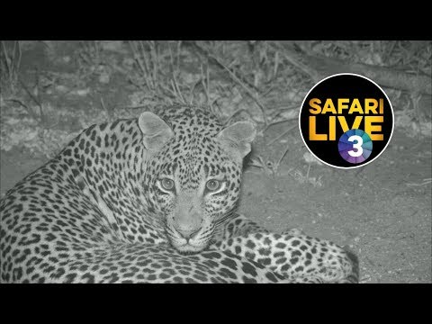 safariLIVE on SABC 3 S2 - Episode 9