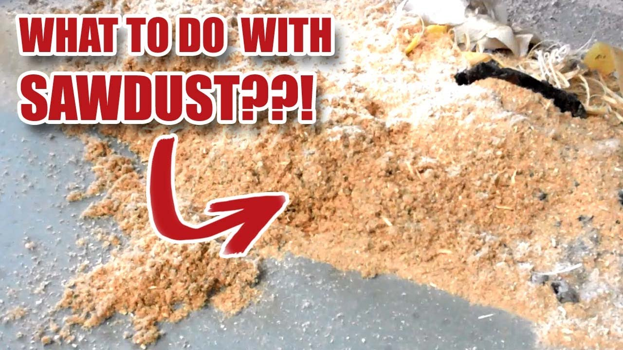 Working In Sawdust ~ What to do with sawdust youtube