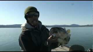 IRod bass fishing on Clearlake with Paul Bailey
