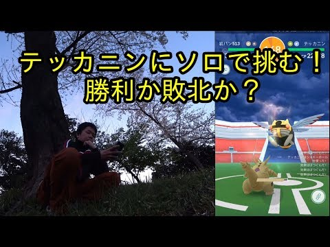 【ポケモンGO】テッカニンにソロで挑む!勝利か敗北か?