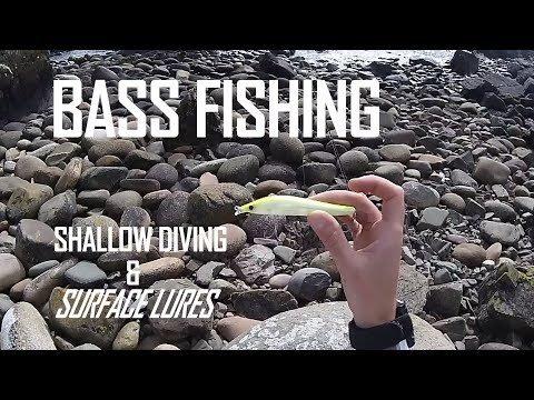 Lure Fishing For Bass On Shallow Diving And Surface Lures