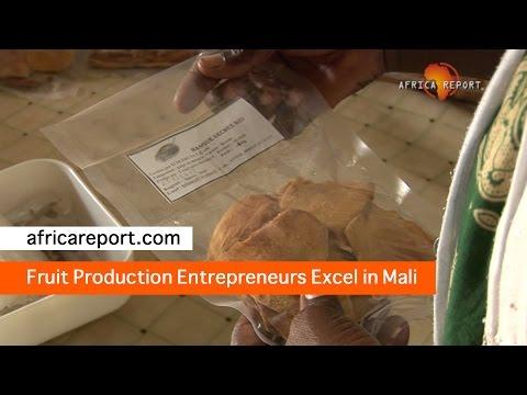 Fruit Production Entrepreneurs Excel in Mali