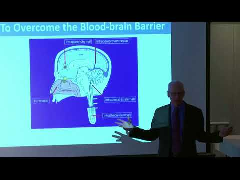 Alzheimer's Disease: New Approaches to Treatment and Prevention
