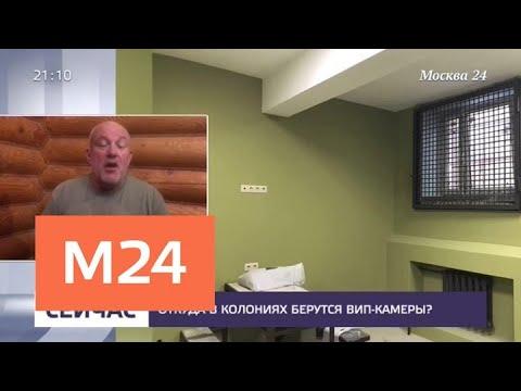 Откуда в колониях берутся вип-камеры - Москва 24