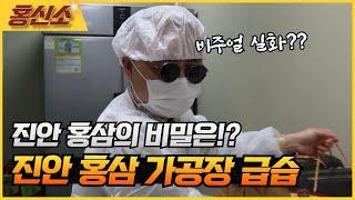 [홍신소]진안 홍삼 가공장 급습사건!! 비밀을 찾기 위…