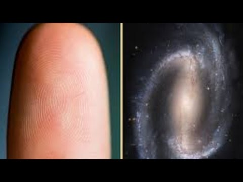7 BIZARRE Human Consciousness Theories