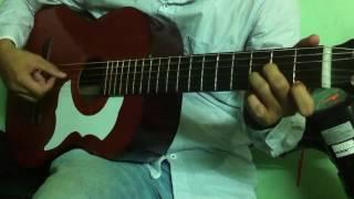 nhung doi hoa sim guitar