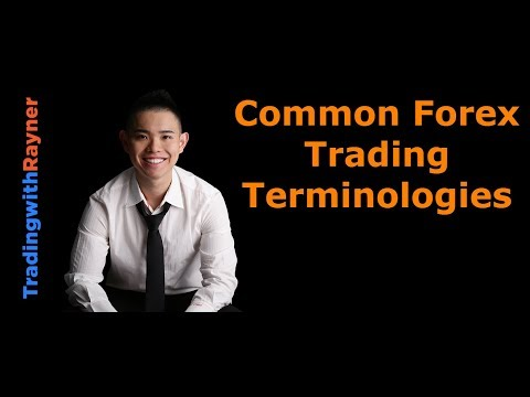 Forex Trading for Beginners #4: Common Forex Trading Terminologies by Rayner Teo