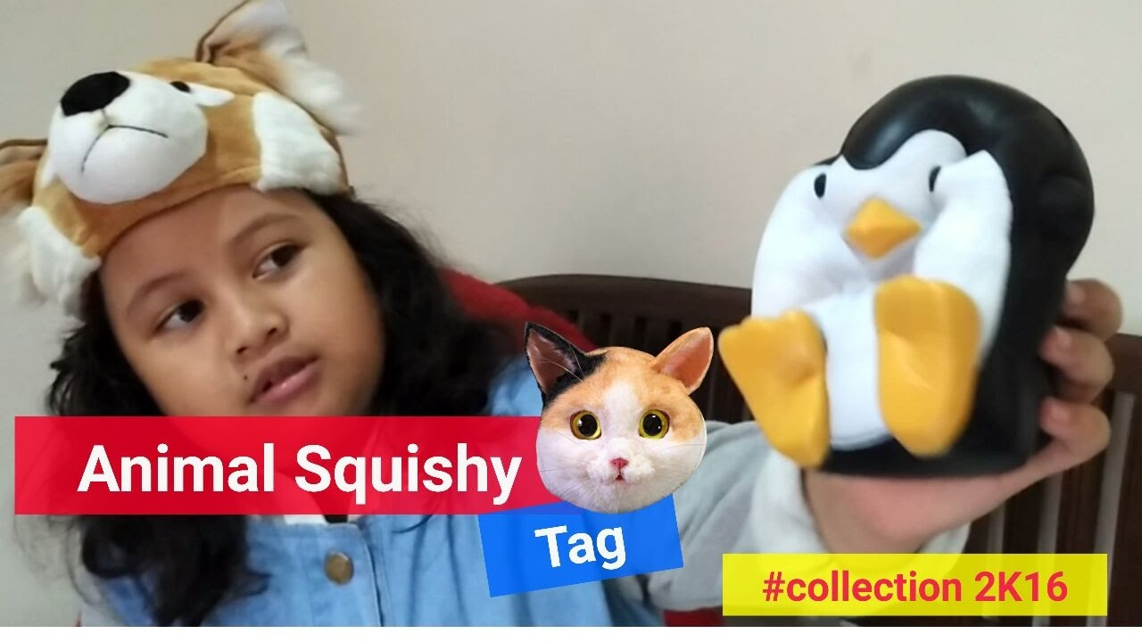 Animal Squishy Tag #collection 2K16 - YouTube