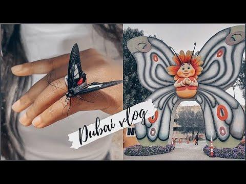 DUBAI VLOG | worlds largest butterfly garden