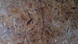 видео Базальтовый утеплитель. Минеральная вата. Виды, свойства. Часть 1