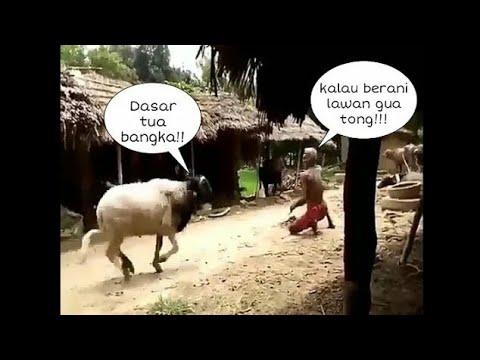 Download Video lucu parah!!Part 2!!.Tahan tawa 8 menit..!!😂😂