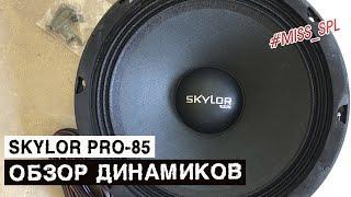 Динамики SKYLOR PRO-85 - обзор и прослушка - #miss_spl