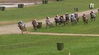 Vidéo de la course PMU PRIX D'ALBRET