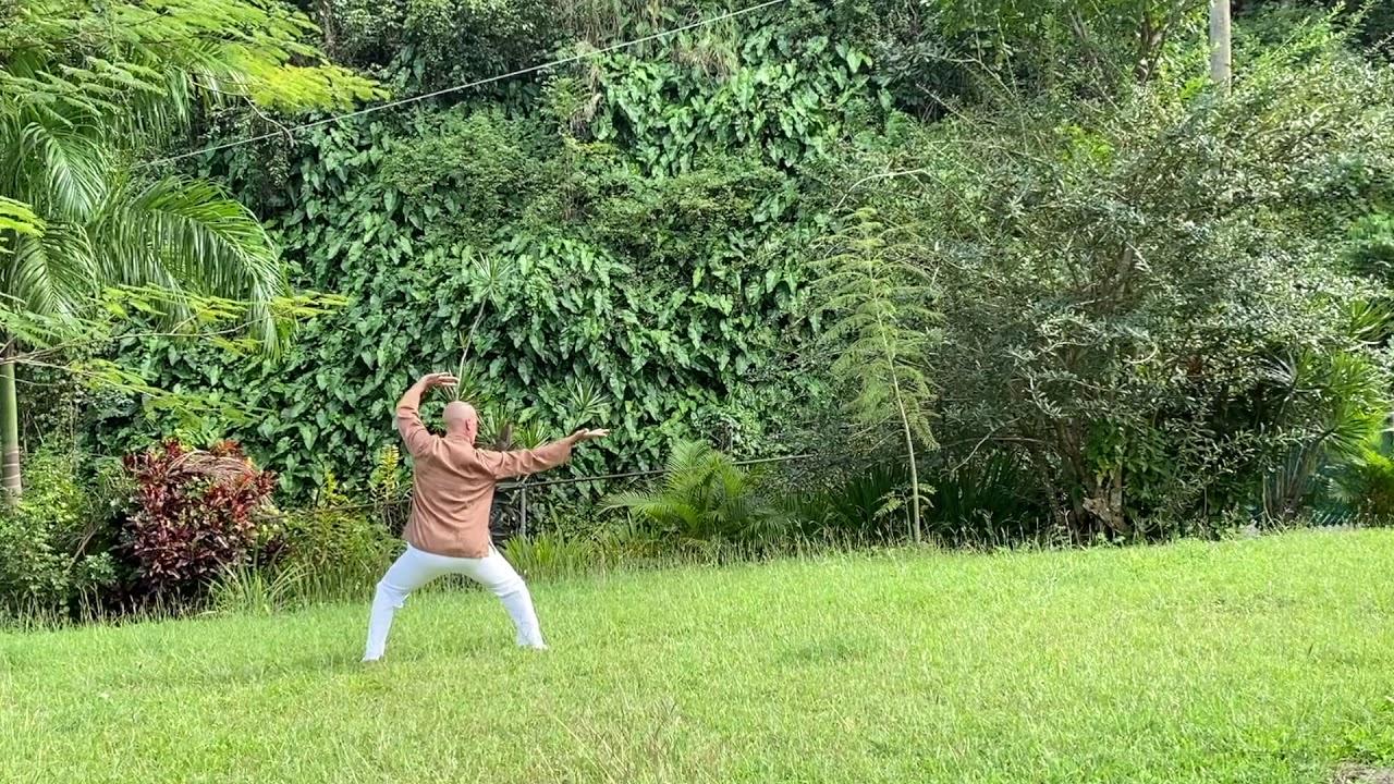 Kungfu Wudang | Zhang San Feng | Gran Maestro Wong Kiew Kit