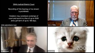 video: Cat lawyer: An anatomy of the best Zoom video to come out of lockdown