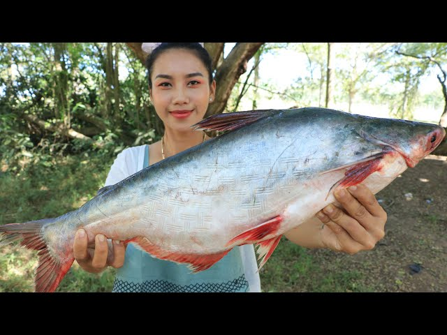 Cooking fish fried with fish soup recipe in my village