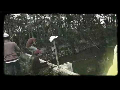 SOFIE lagu indie TERBAIK 2017