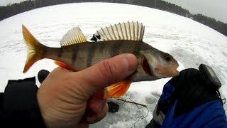 Рыбалка со льда в конце ноября, с эхолотом Практик ЭР-6Pro2