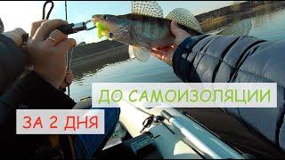 Рыбалка с лодки на Москве реке открытие лодочного сезона 2020