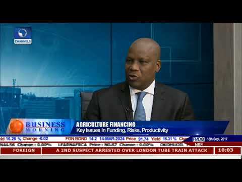 Key Issues In Agricultural Financing, Risks, Productivity Pt.1 |Business Morning|