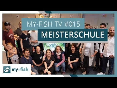 Wie lief die Aquarium Design Meisterschule? Interview mit Matthias Wiesensee | my-fish TV