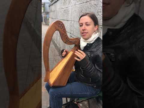 Irish Harp Street Musician In Cork