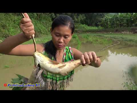 Survival skills - Hand fishing caught fish while growing rice - Cooking fish for eating delicious