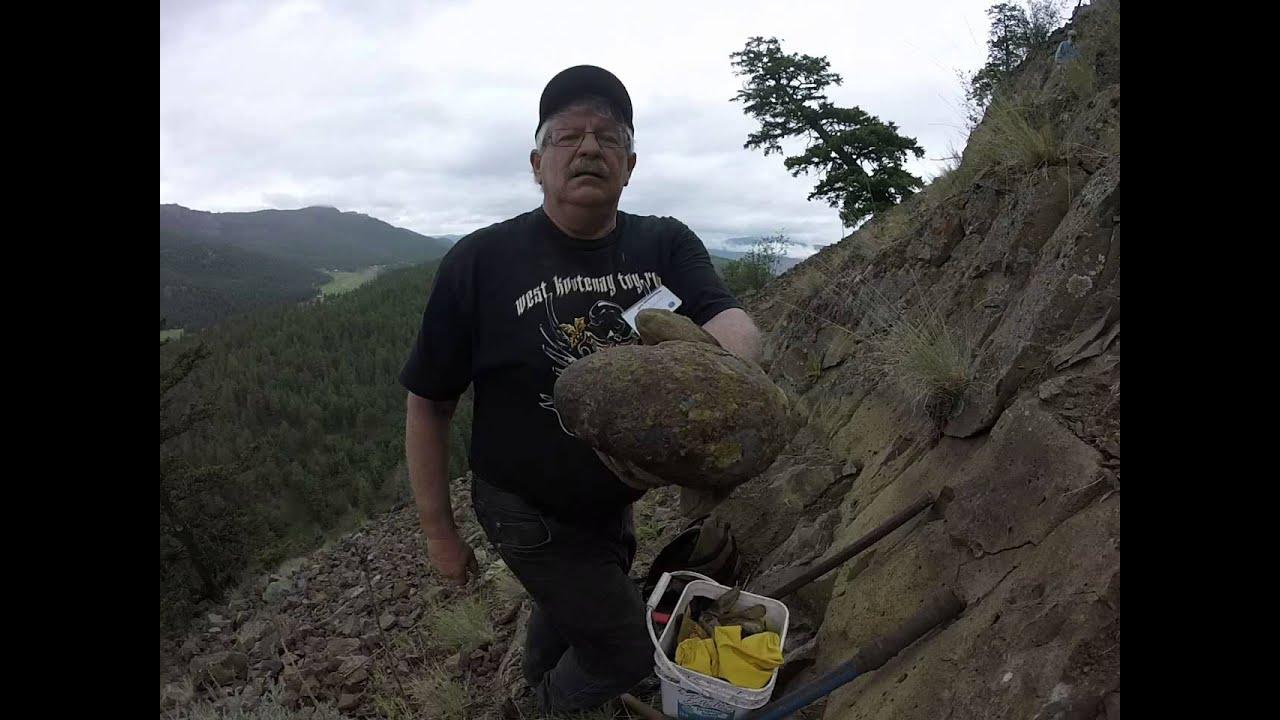 B C  Mineral Hunter [ Amethyst Geodes ]