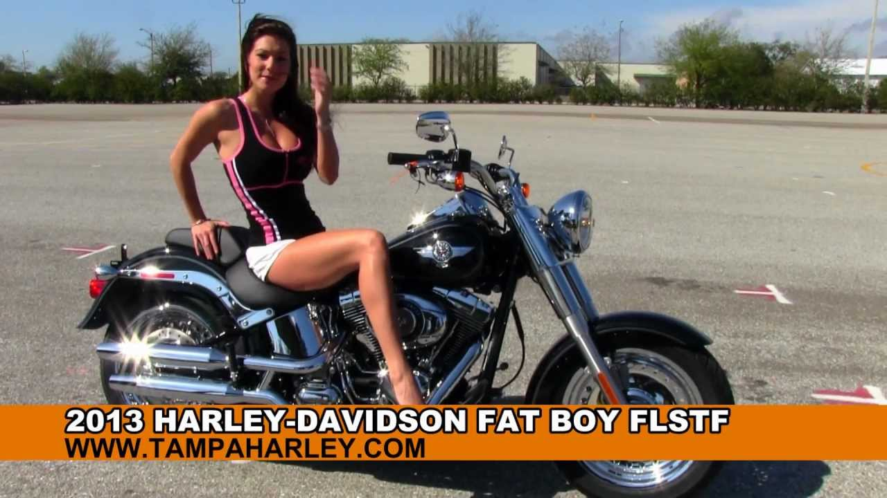 Harley Davidson Flstf For Sale