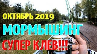 МОРМЫШИНГ РУЛИТ ОСЕННЯЯ РЫБАЛКА 2019