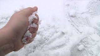 Spadł pierwszy śnieg