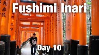 Beautiful Fushimi Inari Shrine & Herring Soba Noodles