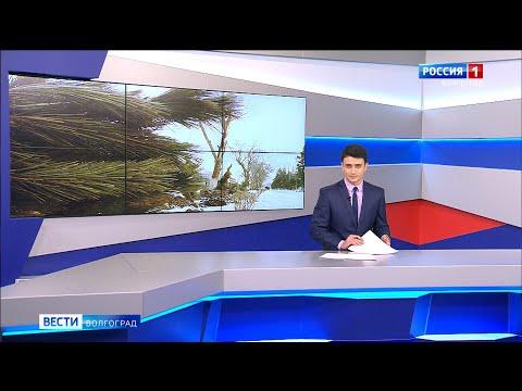 Вести-Волгоград. Выпуск 17.02.20 (11:25)