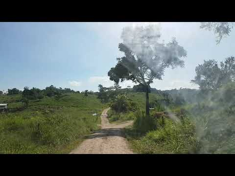 Belize Season 2 Episode 4