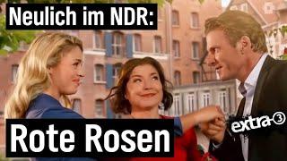 Neulich im NDR: Rote Rosen