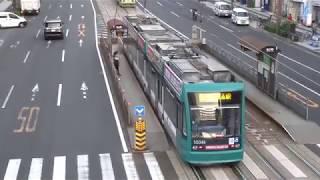 広島電鉄 5000形「広島ドラゴンフライズ」ラッピング車両 本川町電停付近にて 20171113