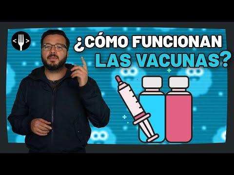 ¿Cómo funcionan las vacunas?