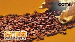 《远方的家》 20190909 长江行(24) 金沙夕照 宾川味道| CCTV中文国际