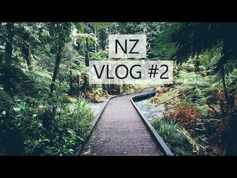 Road Tripping New Zealand's North Island   FAMILY TRAVEL VLOG