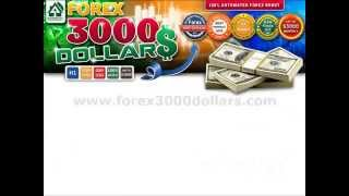 Forex 3000dollars Robot makes +$393,00 in just 1 day- 100% AUTO