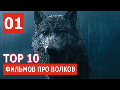 Художественные фильмы про животных / Feature films about animals